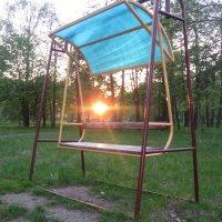 Солнце село на скамейку :: Александр Жукович