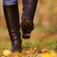 а я иду, шагаю по листве! :: Иннокентий Авдонин