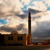 Прогулки по Иордании :: Валентина Потулова