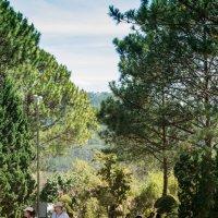 В окрестностях Далата, Бкддийский монастырь Чук Лам. :: Виктор Куприянов