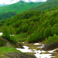 Альпийские луга :: Эдуард Кочетов