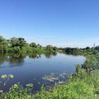Река Угра :: Дядя Юра