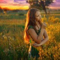 летний закат :: Viktoriya Bilan