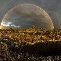 Идёт дождь, разгорелась радуга. :: Фёдор. Лашков