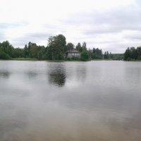 Утро у реки Оредеж. :: Жанна Викторовна