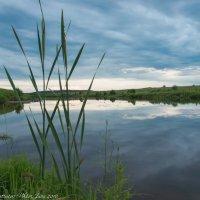Раннее утро на речке. :: Виктор Евстратов