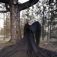 """Фотосессия """"Чёрный ангел"""" :: Любовь Дашевская"""