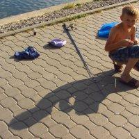 Молодой, но опытный рыбак :: Андрей Лукьянов