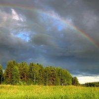 Эти летние дожди, Эти радуги и тучи....... :: Павлова Татьяна Павлова