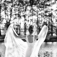 Невеста-лебедь :) :: Оля Ветрова