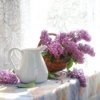 Сиреневое  утро :: Наталья Казанцева