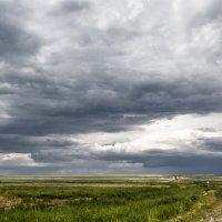 Перед грозой :: Александр Никишков