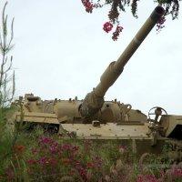Экспозиция израильского бронетанкового музея «Яд ле-Ширьон». :: Валерий Новиков