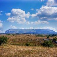 Нижнее плато Чтыр-Дага :: Slava Hamamoto