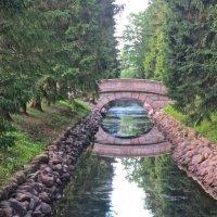 горбатый мост в Пушкине :: Елена