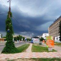 Перед грозой... :: Сергей Петров