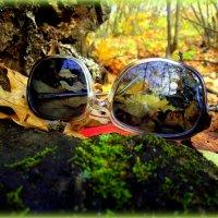 1 июля - День изобретения солнцезащитных очков )) :: Андрей Заломленков