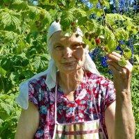 Сладкая ягода :: Валерий Талашов