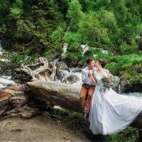 Свадьба на Домбае :: Роман Склейнов