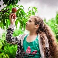 Девочка в персиках :: Марина Алексеева
