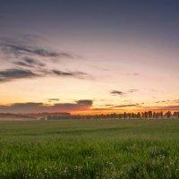 Вечер в поле :: Виктор Четошников