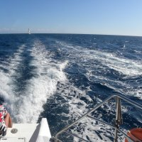 Прогулка по морю :: Вера Щукина