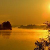Золотой рассвет. :: nadyasilyuk Вознюк