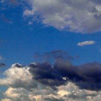 HTC Photo :: Tatiana Golubinskaia