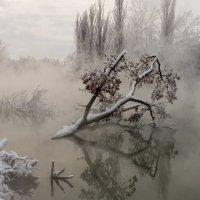 Туман над водой :: Александр Плеханов