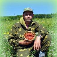 На земляничных полянах :: Андрей Заломленков