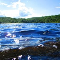 Озеро недалеко от Североморска :: Людмила Жердева