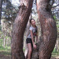 В лесу. Чудеса природы. :: Ирина Диденко
