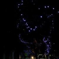 ночь перед рождеством :: Инна Церульнёва