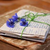 Старые  письма :: Наталья Казанцева