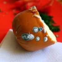 А любите ли вы сыр с плесенью?)) :: Андрей Заломленков