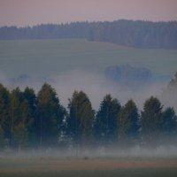 Туманное утро. :: nadyasilyuk Вознюк
