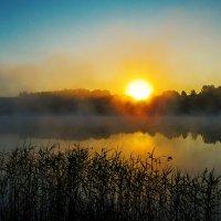 В тумане встающее-2 :: Сергей Цветков