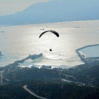 Полет над морем :: Анастасия