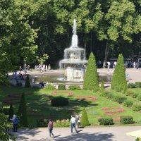 в Петергофе :: Михаил Радин
