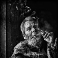 Алтайский бродяга… :: Roman Mordashev