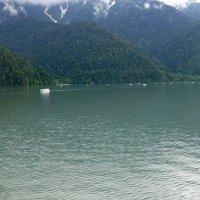 Озеро Рица :: Наиля