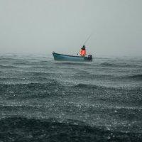 Непогода :: Анна Выскуб