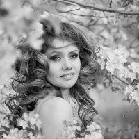 Яблоневый цвет :: Евгения Кузнецова