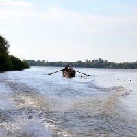 Рыбак на Дунае :: Nina Streapan