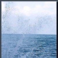 море.  волна.  брызги. :: Ivana