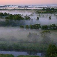 Туман над рекой :: Елена Перевозникова