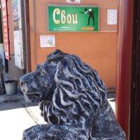 Лев на собачьей службе у мафии... :: Алекс Аро Аро