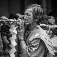 Фестиваль Огионса :: Slava Hamamoto