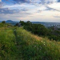 Летний вечер на горе Горячей :: Алексей Забабурин