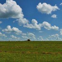 облака :: Николай Мальцев